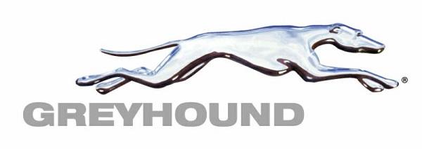 Greyhound 2