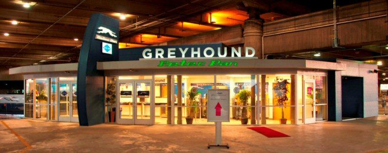 Greyhound line
