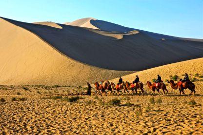 desert 1 (2)