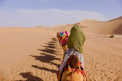 desert 1 (3)