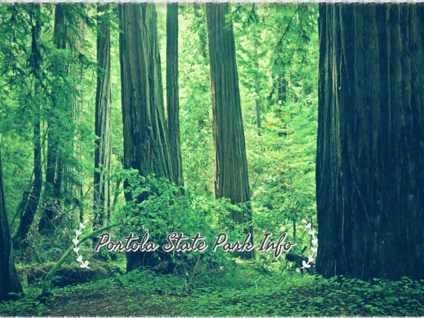 Portola State park Info (2)